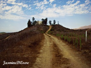 the hike 2