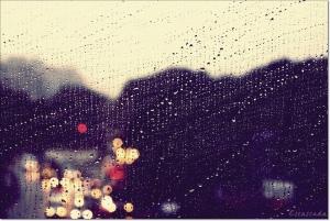 Winter Rain by Yen H Nguyen via Flickr