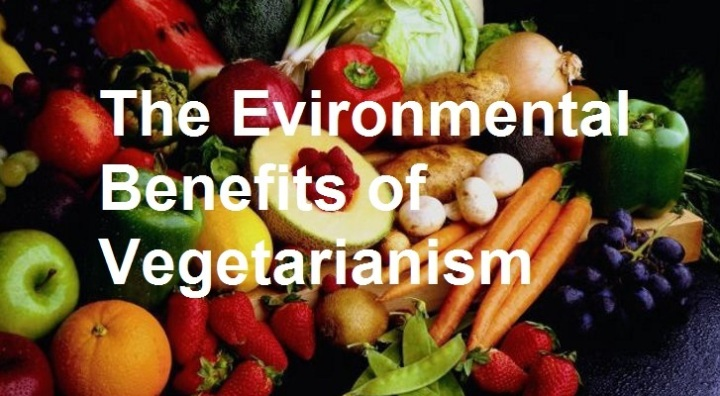 The Environmental Benefits of Vegetarianism