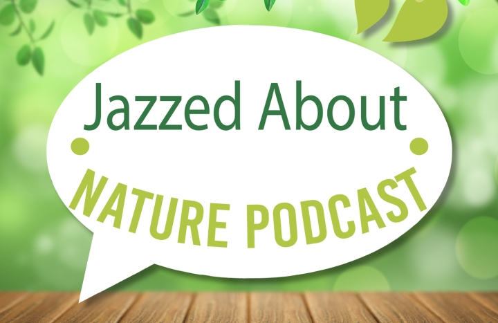 Jazzed About Nature Podcast | Episode 2: Black Girls Trekkin